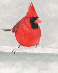 Red Cardinal Bird Oil on Paper