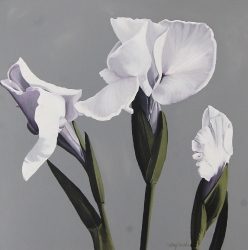 Three Iris Flowers Acrylic Painting