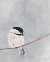 Chickadee_Bird_P_518109e22d241.jpg