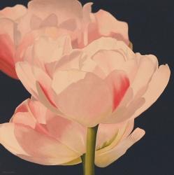 Pink Tulips Acrylic on Canvas